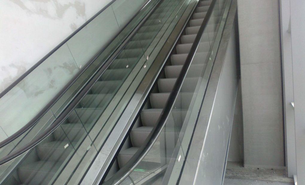 scale mobili capriolo